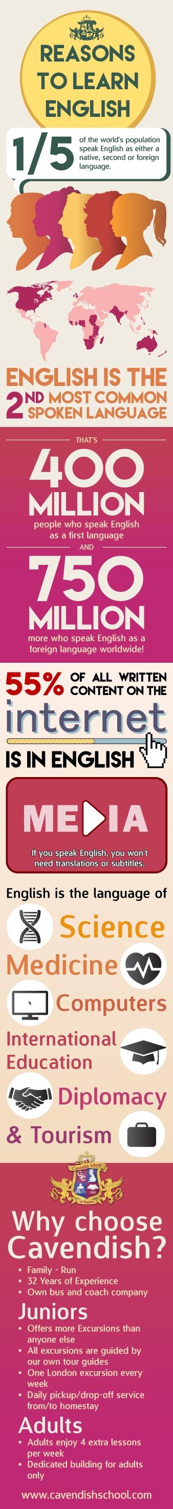 infographic (3)